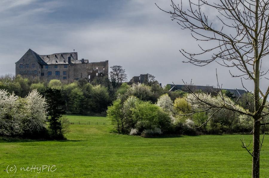 Burg Hohensolms