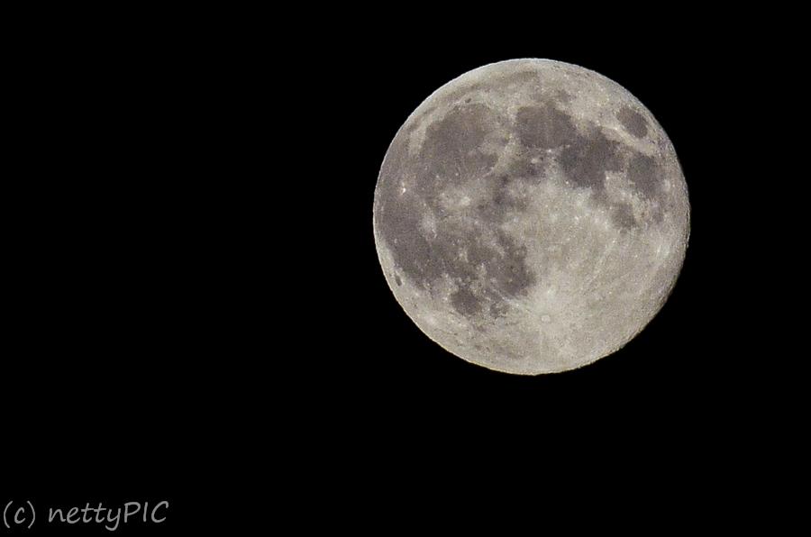 Vollmond / Full moon