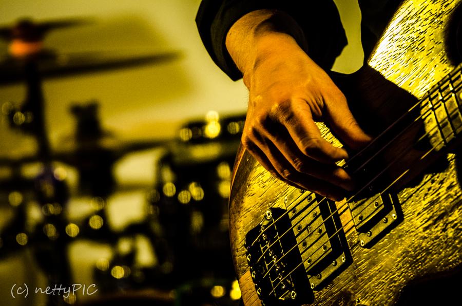 Konzertfotos  #1 – Detailaufnahmen