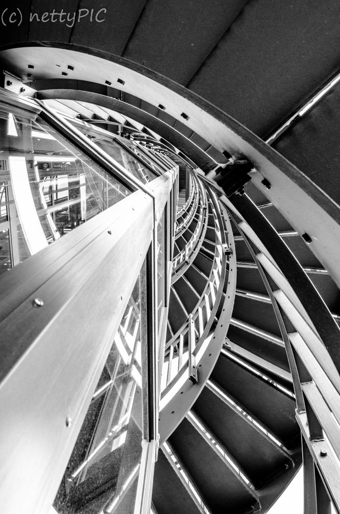 "Fotoprojekt 26|Dreizehn ""Froschperspektive"""