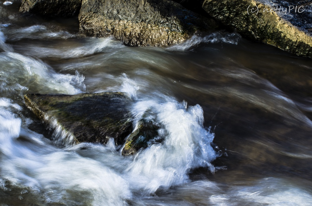Wasser / Water