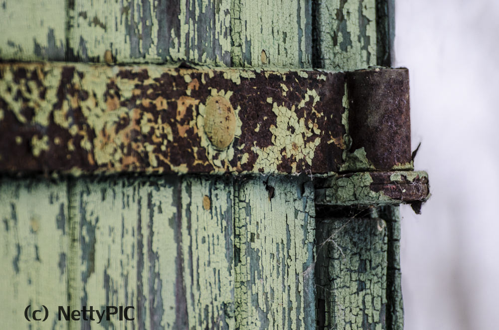 Rost # 7 / Rust #7
