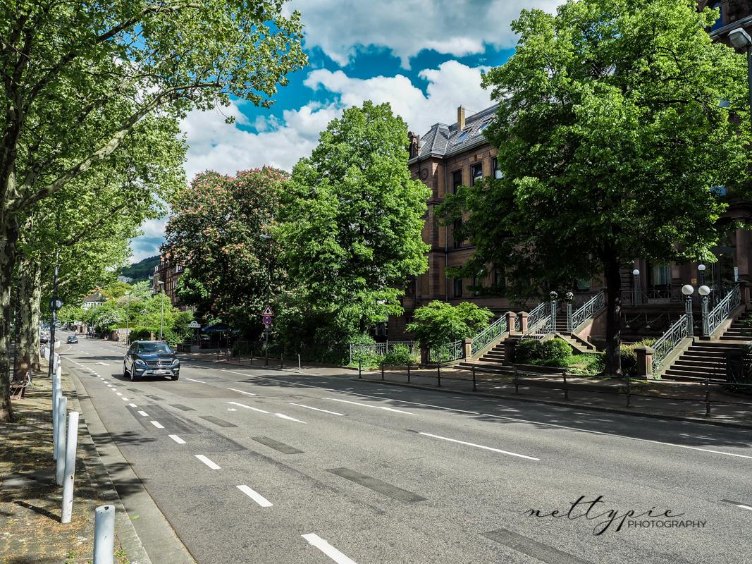 Heidelberg #1