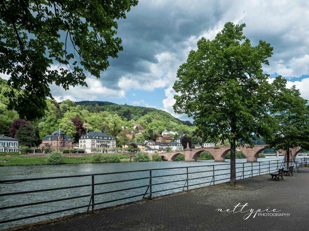 Heidelberg #2