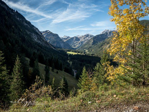 Wanderung auf das Neunerköpfle in Tannheim